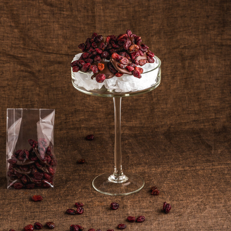 Cranberry fruitchocolade